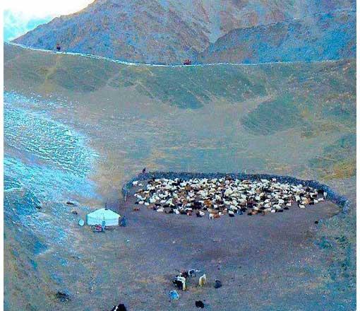 A present-day nomadic yurt