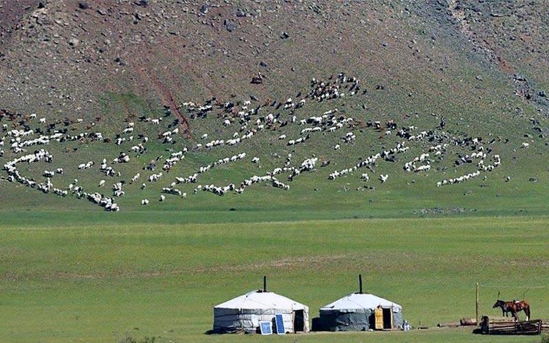 Yurts&Nomads (11)