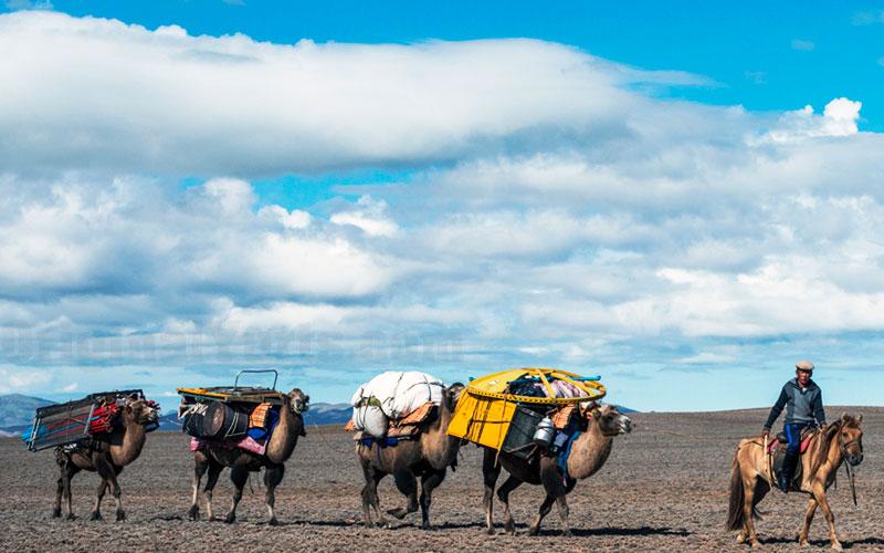 Yurts&Nomads (13)