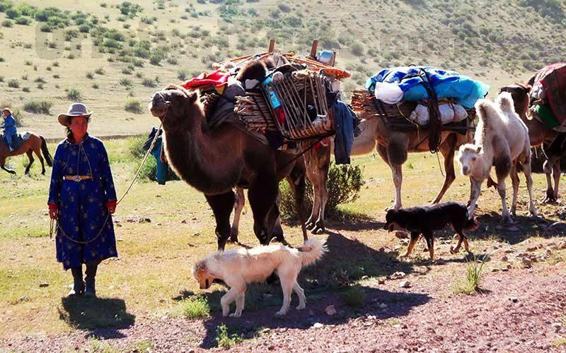 Yurts&Nomads (34)