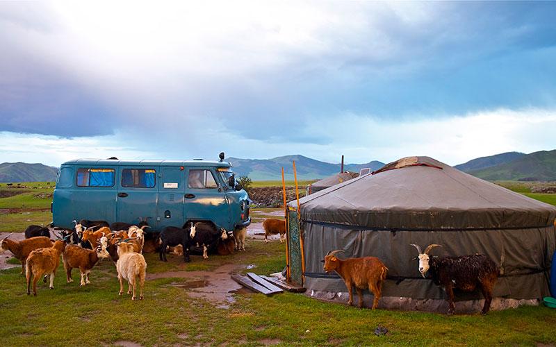 Yurts&Nomads (38)