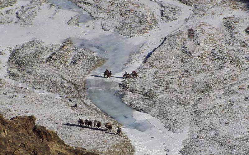 Yurts&Nomads (4)