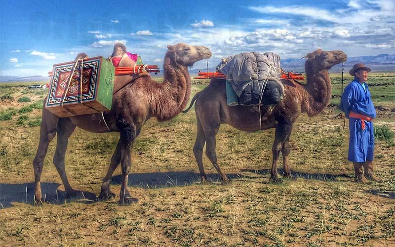 Yurts&Nomads (40)