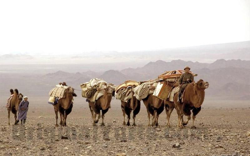Yurts&Nomads (42)