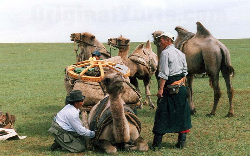 Yurts&Nomads (8)